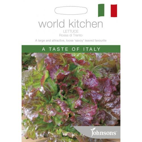 Seminte LACTUCA sativa-Lettuce-Rosa di Trento - Salata tip Butterhead, verde cu bordura rosie