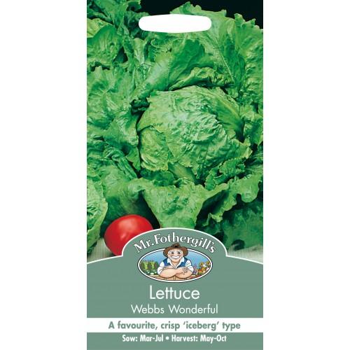 Seminte LACTUCA sativa-Lettuce-Webs Wonderful - Salata-căpățână tip iceberg