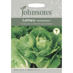 Seminte LACTUCA sativa-Lettuce-Winter Density - Salata de iarna