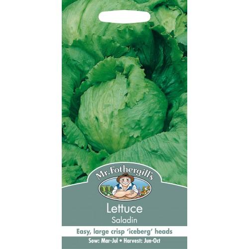 Seminte LACTUCA sativa-Lettuce-Saladin - Salata tip iceberg