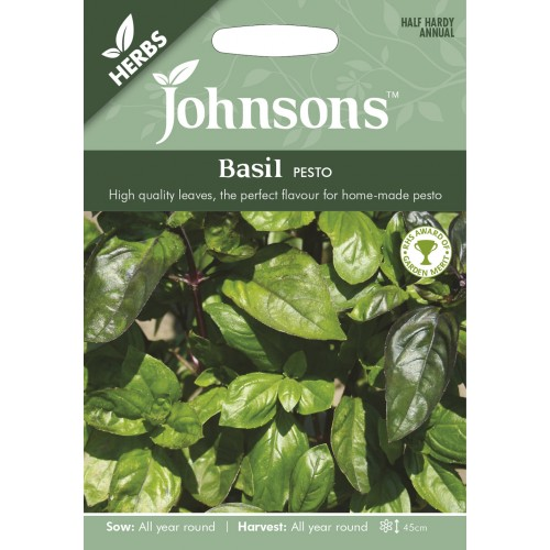 Seminte OCIMUM basilicum Pesto - Busuioc cu aroma intensa, pentru pesto