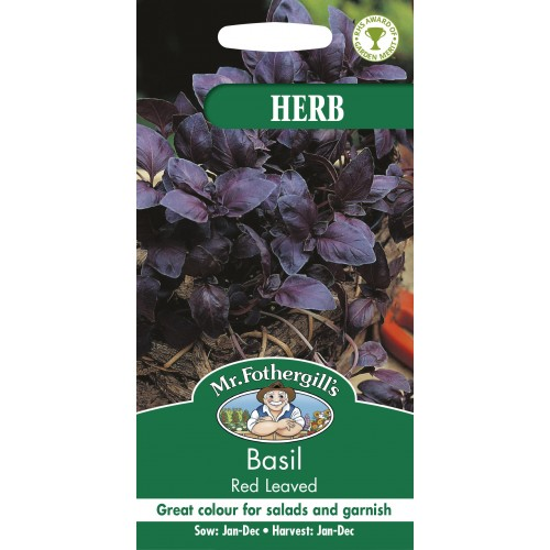 Seminte OCIMUM basilicum -Basil-Red Leaved - Busuioc rosu aroma de cuisoare
