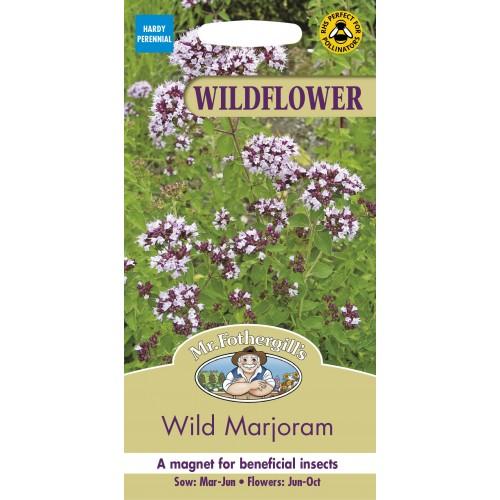 Seminte ORIGANUM vulgare Wild Marjoram - Maghiran