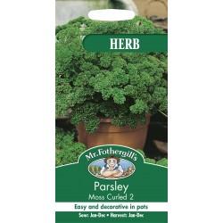 Seminte PETROSELINUM Moss Curled  - Patrunjel cret