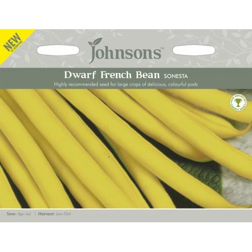 Seminte PHASEOLUS vulgaris-Dwarf Bean- Sonesta - Fasole pitica fideluta cu pastai galbene