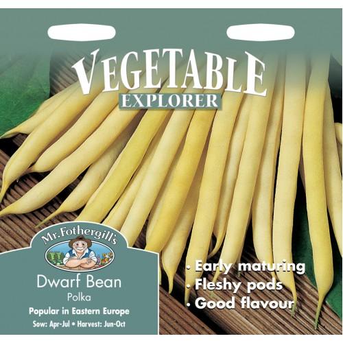 Seminte PHASEOLUS vulgaris-Dwarf Bean- Polka - Fasole pitica cu pastai galbene subtiri