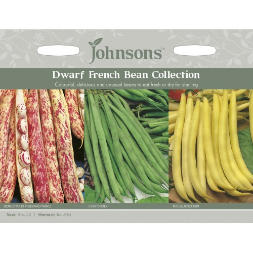 Seminte PHASEOLUS vulgaris-Dwarf Bean-Coloured Collection - Fasole pitica - Colectie - 3 soiuri