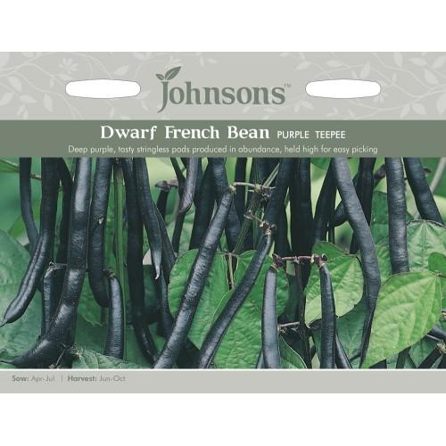 Seminte PHASEOLUS vulgaris-Dwarf Bean- Purple Teepee - Fasole pitica, fideluta, cu pastai negre