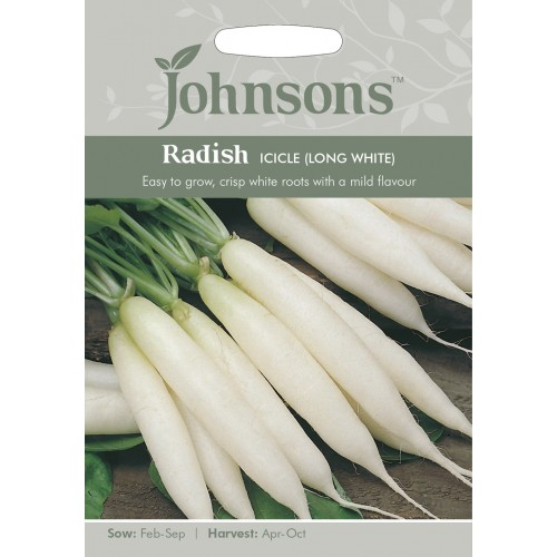 Seminte RAPHANUS sativus Icicle (Long White) - Ridichi asiatice albe tolerante la caldura