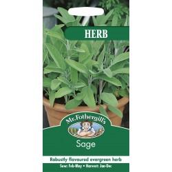 Seminte SALVIA officinalis - Salvia condimentara