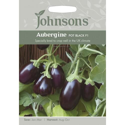 Seminte SOLANUM melongena-Aubergine-Pot Black F1 - Vinete mici, de ghiveci