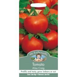 Seminte TOMATO Ailsa Craig - Tomate medii, soi vechi