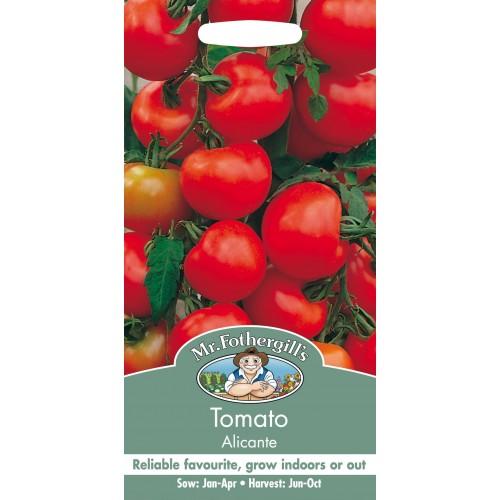 Seminte TOMATO Alicante - Tomate medii, soi englezesc
