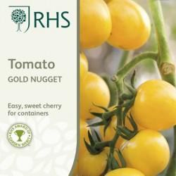 Seminte TOMATO Gold Nugget - Tomate pitice, cherry galbene