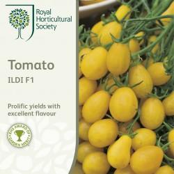 Seminte TOMATO Ildi F1-Tomate galbene, forma de para