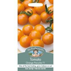 Seminte TOMATO Orange Paruche F1 - Tomate medii portocalii