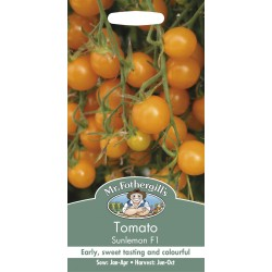 Seminte TOMATO Sunlemon F1 - Tomate cherry portocalii