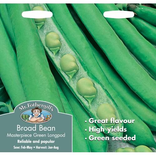 Seminte VICIA faba-Broad bean-Masterpiece Green Longpod - Bob vedre
