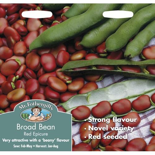 Seminte VICIA faba  (Broad) Red Epicure - Bob rosu