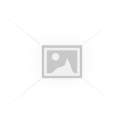Bulbi lalele-diverse Pachet -50 bulbi